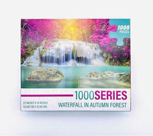 Picture of 1000 Pc Adult Puzzle- 2 Asst