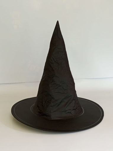 Picture of Witch Black Hat