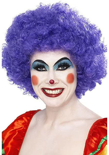 Picture of Clown Wig - Purple Hair